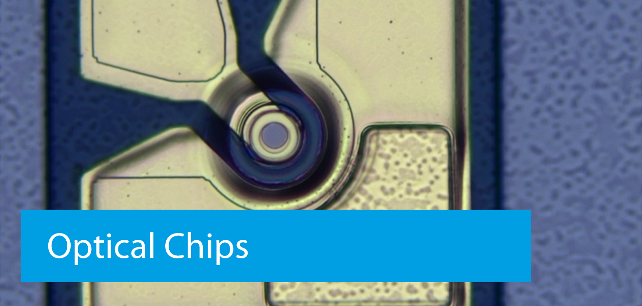 Optical Chips